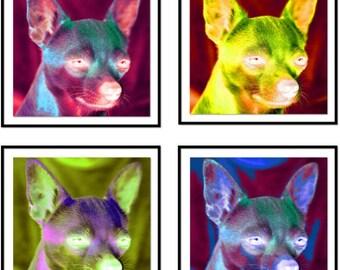 Dog Art Print - Apollo