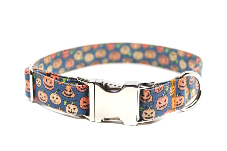 Spooky Pumpkins Dog Collar Halloween Dog Collar Fall Dog image 0