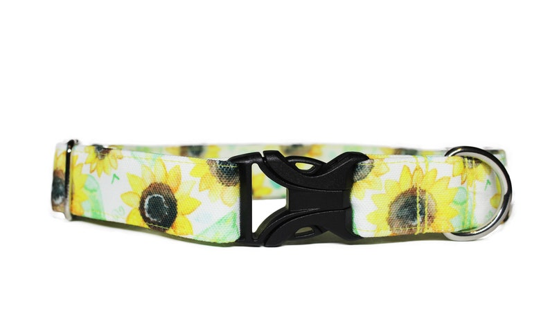 Sunflower Fields CANVAS Dog Collar Floral Dog Collar Summer image 0
