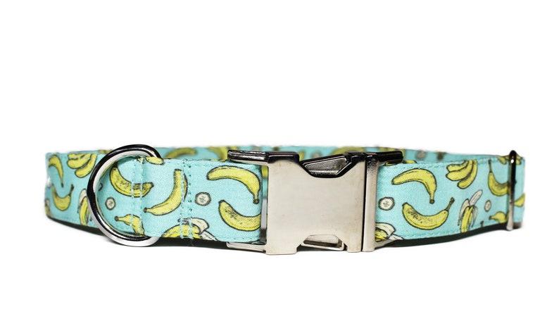 Go Bananas Dog Collar Summer Dog Collar Dog Mom Gift Boy image 0