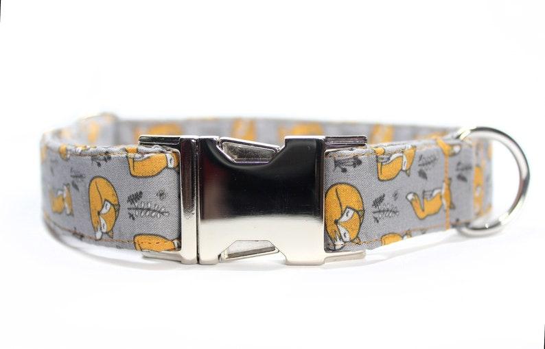 Orange Foxes Dog Collar Fall Dog Collar Dog Mom Gift Boy image 0