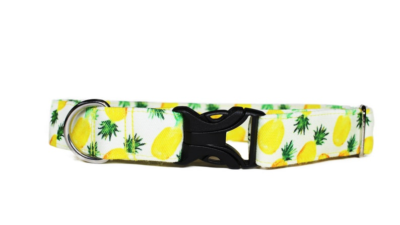 Pineapple Party CANVAS Dog Collar Summer Dog Collar image 0