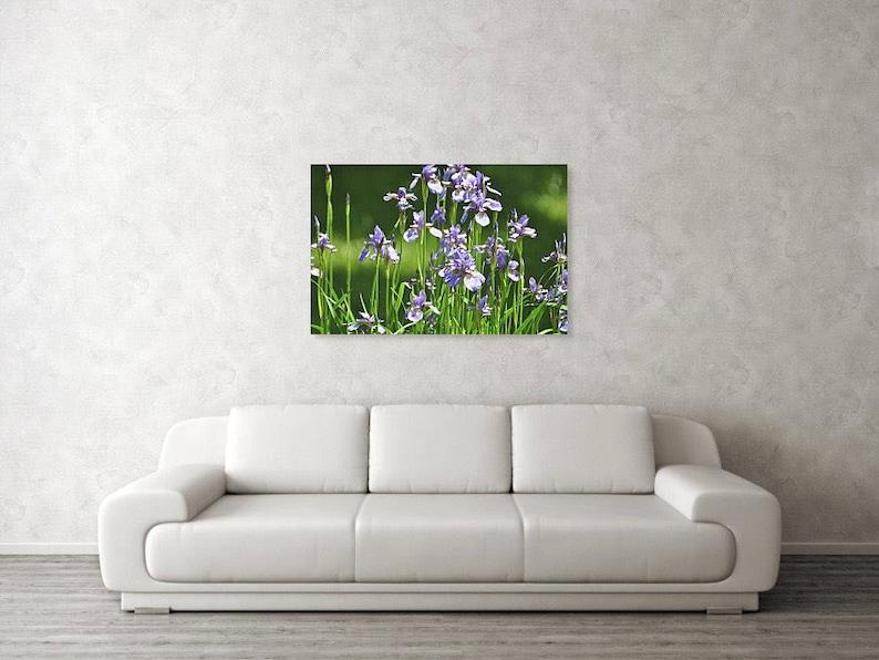 Summer Photography Purple Iris Flower Photography Iris Flower Photography Flower Photography Fine Art Photography