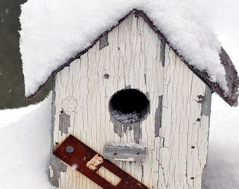 Fine Art Photography, Portrait ( vertical) , A Winter Home, bird house photography , bird house decor, snow photography ,