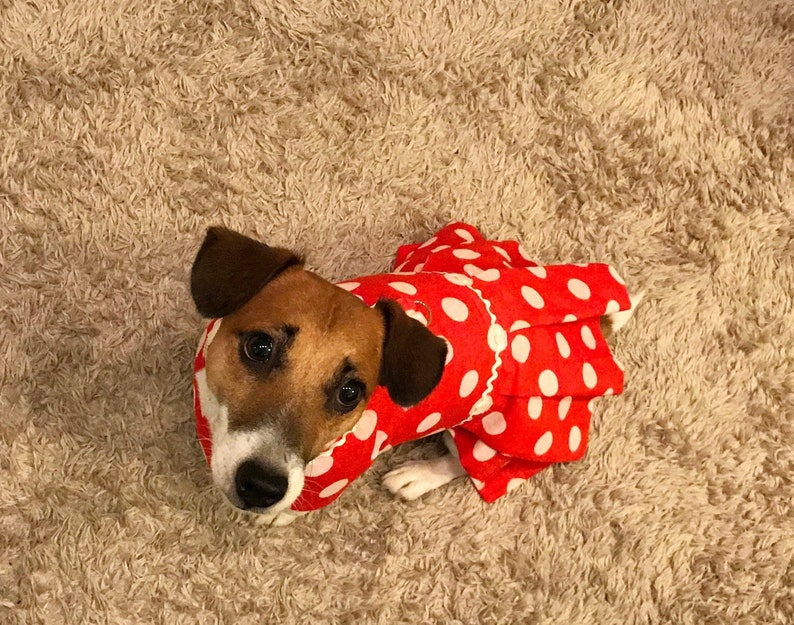 af2102cc1d Small dog red dress White polka dots for dog Party Lux
