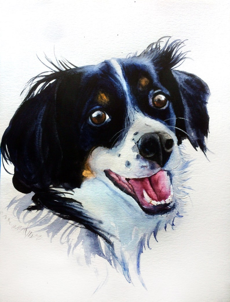 Border Collie watercolor painting Custom pet portrait Personalized pet painting Dog painting Pets art Christmas gift Custom dog painting