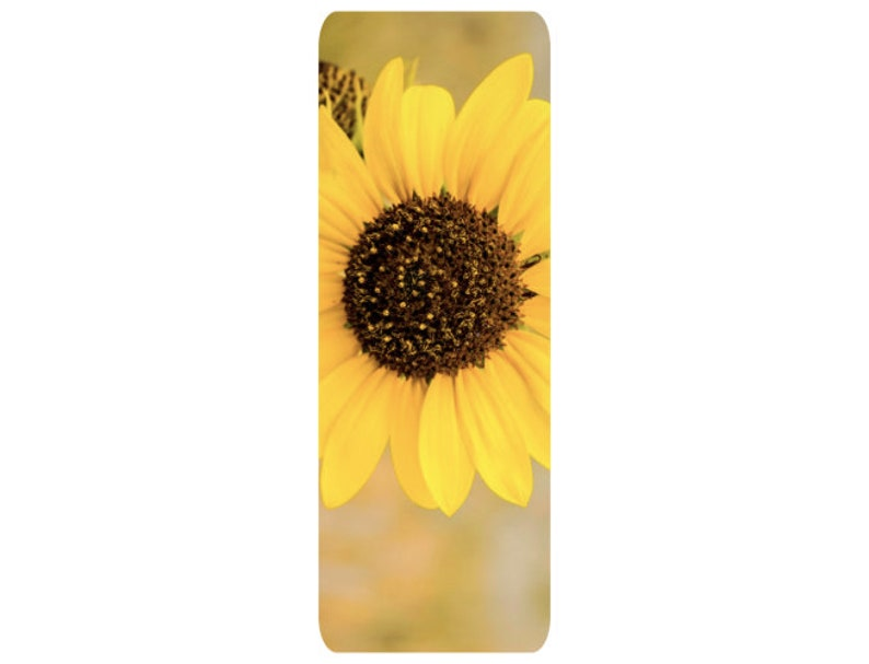 Fair Price Special Sales Superior Quality Sunflower Yoga