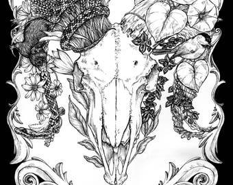 Ram Skull - Original art - Ink