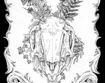 Hare Skull - Original art - Ink