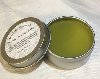 Plantain + Violet Salve ~ organic herbal balm
