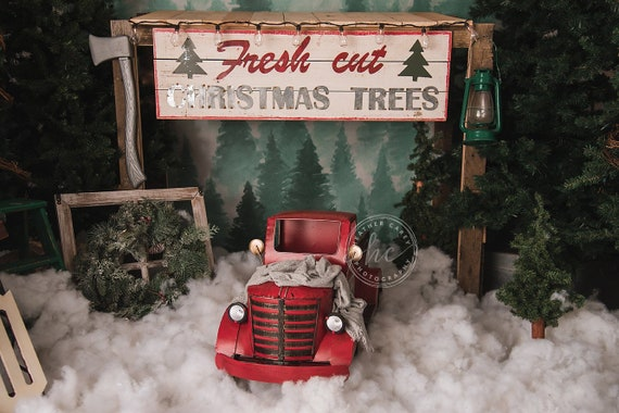 Christmas Setups.Newborn Christmas Truck Digital Backdrop