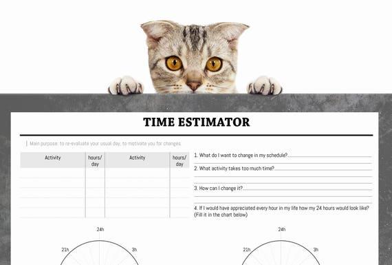 Time Estimatortestself Development Sheetprintable Testday Etsy