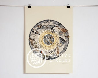 Some Rare Birds of Ireland -Limited edition print on paper