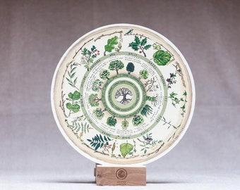 Celtic Tree Calendar - 'Native Circles' Birchwood Wheel by Irish artist Emily Robyn Archer