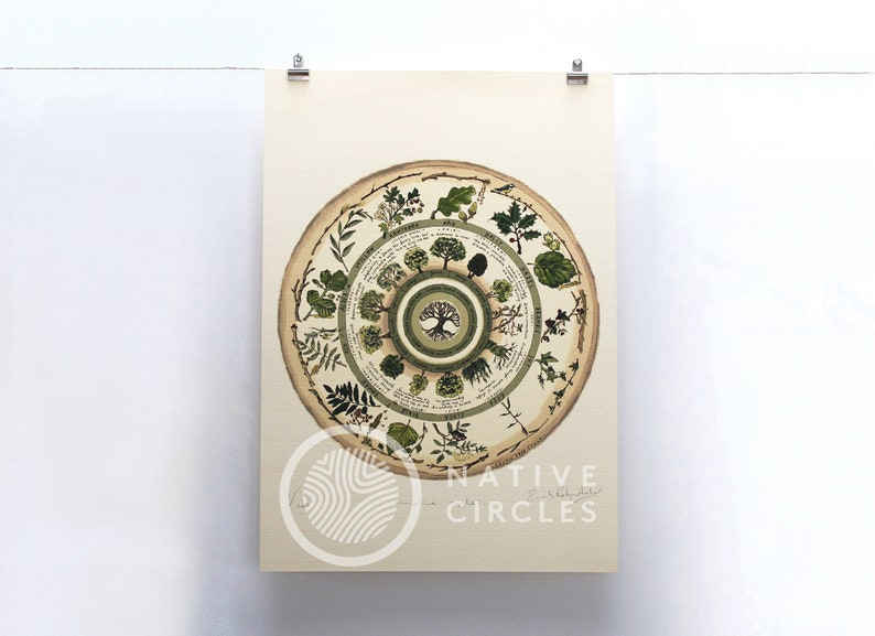 Celtic Tree Calendar  Limited Edition 'Native image 0