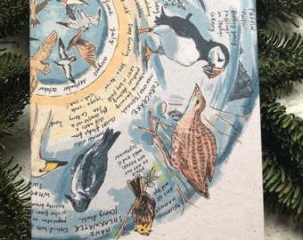Rare Birds of Ireland notebook