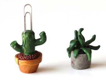 Cactus Couple