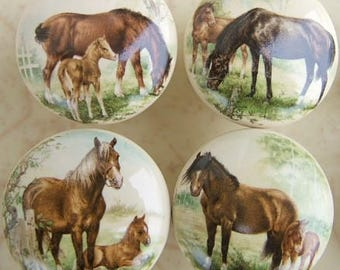Horse Cabinet Knobs Etsy