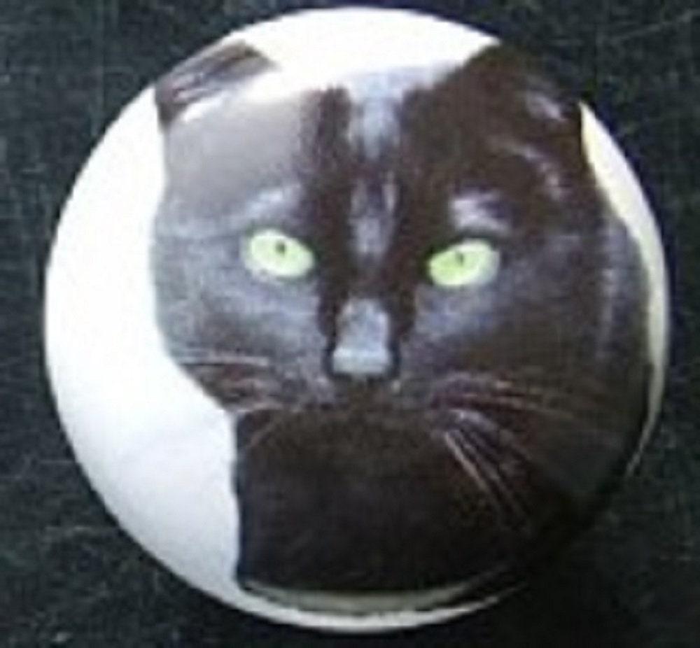 KITTEN CAT HEARTS  HOME DECOR CERAMIC KNOB DRAWER CABINET PULL