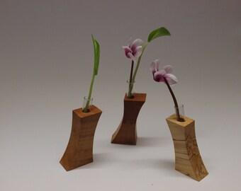 004 Concavex Series mini vase with test tube