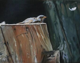 Animal sparrow painting. Bird with Oil on canvas painted by Bernard Guédon