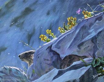 Peinture animalière Marmotte , Campanule et Solidagos . Huile sur toile