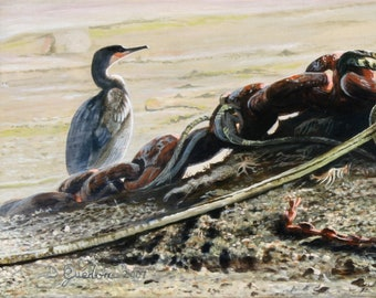 Painting marine oil, large Cormorant, rusty chains, armor ribs, Brittany, Perros-Guirec, by Bernard Guédon animal painter