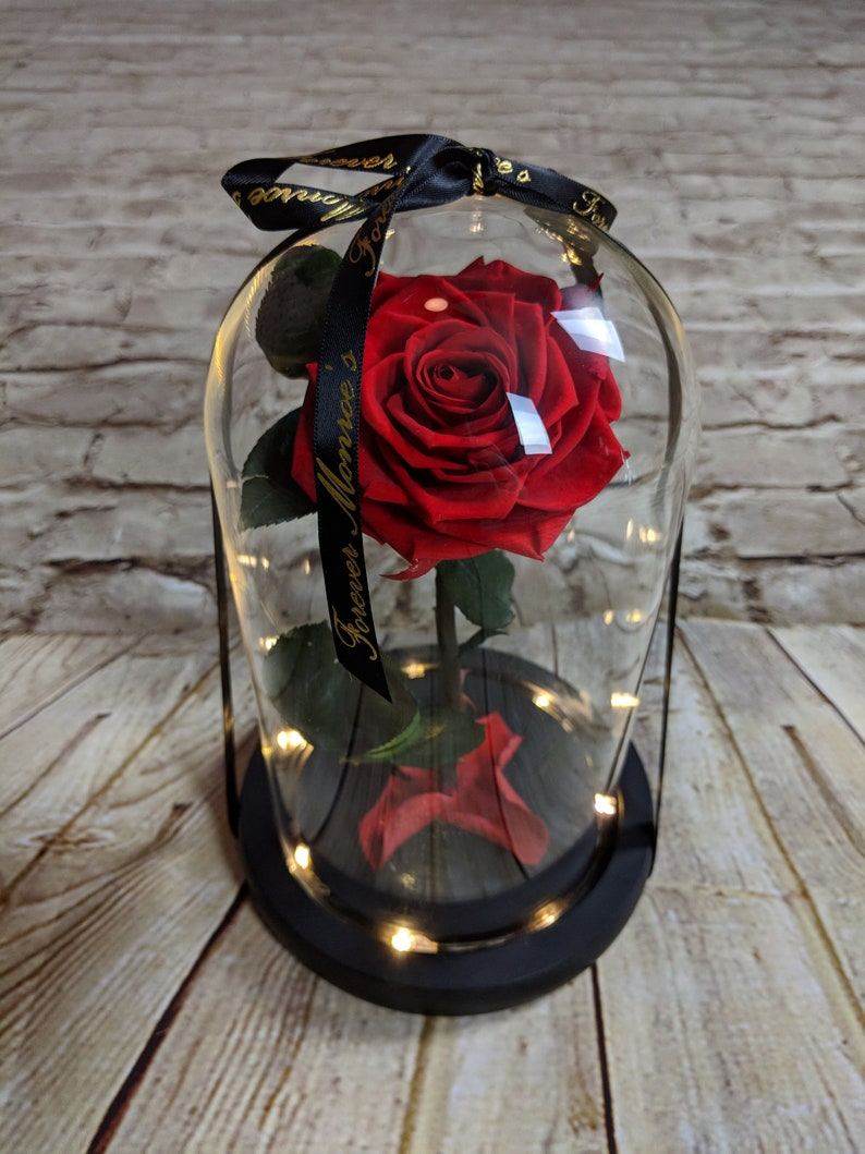Home & Garden Beauty And The Beast Red Rose In A Glass Dome On A Wooden Base Rose Lamp For Valentines Gifts 2 Rose Selling Well All Over The World