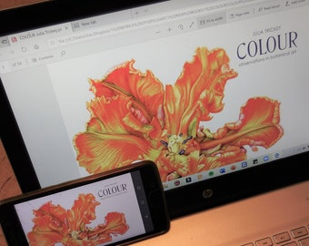 PDF BOOK Colour - observations in botanical art (NO colour mixing kit)