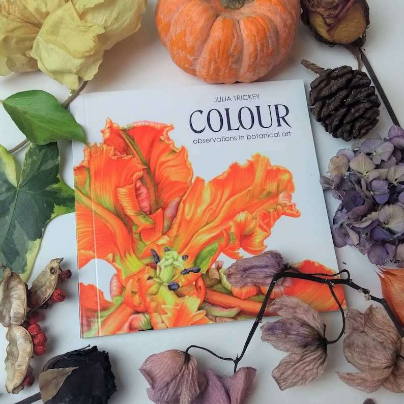 BOOK Colour  observations in botanical art with colour image 0