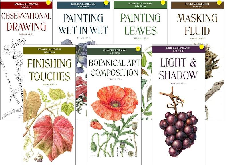 DOWNLOADS Botanical Art Leaflets image 0