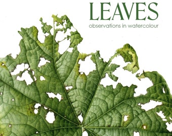 BOOK Leaves - observations in watercolour