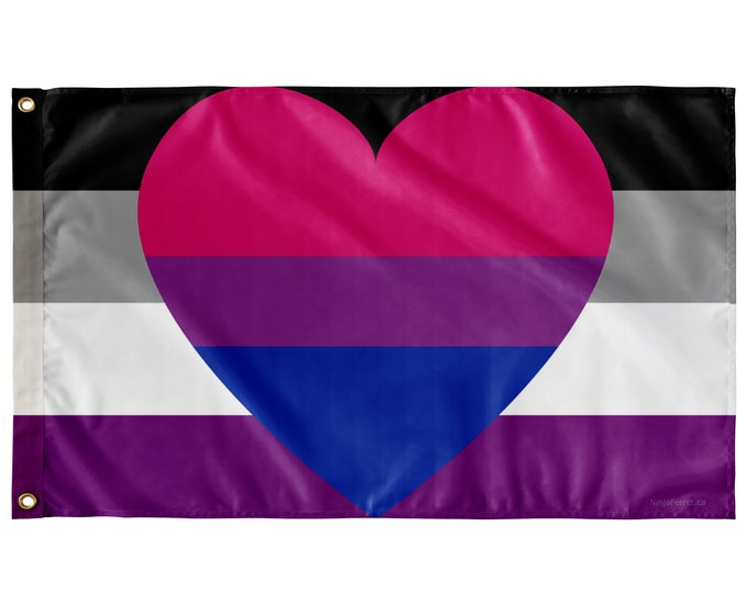 """Featured listing image: Asexual Biromantic Pride Wall Flag   Single-Reverse   36x60"""""""