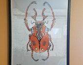 Horned Beetle *Framed Signed Print (1 of 2)