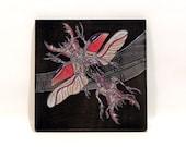 Double Headed Beetle | Ka...