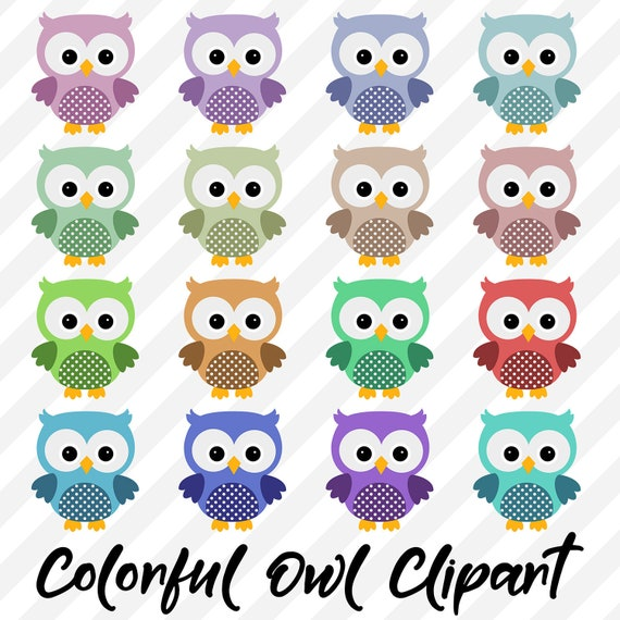 Owl Clipart Cute Owls Colorful Owl Images Png Clip Art Etsy
