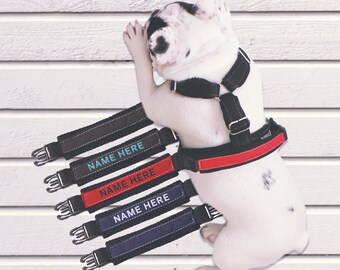 Extra Handle for Dog Harness/ Handle Harnesses for Dogs - Different patterns /Premium Harness - FABRIC