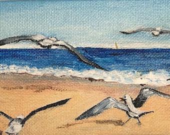 Montauk Seagulls