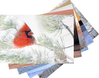 Wisconsin Winter Photo Fine Art Note Card Set
