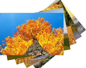 Wisconsin Fall Colors Photo Fine Art Note Card Set