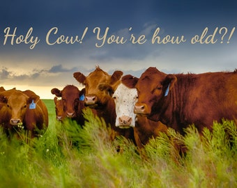 Holy Cow! You're How Old? (Happy Birthday Card)