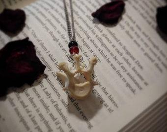 Real bone and agate vertebrae necklace