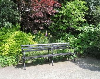Central Park Bench Etsy
