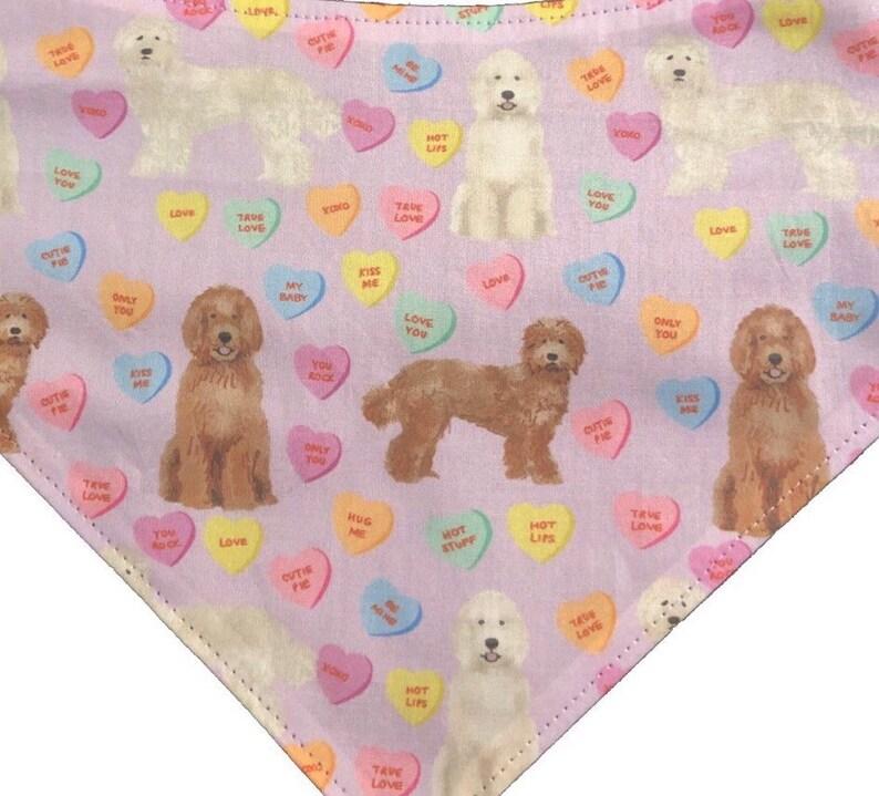 Pet Gift Dog Gift Tie On Bandana Conversation Hearts Bandana Labradoodle Goldendoodle Doodle Valentine/'s Day Bandana