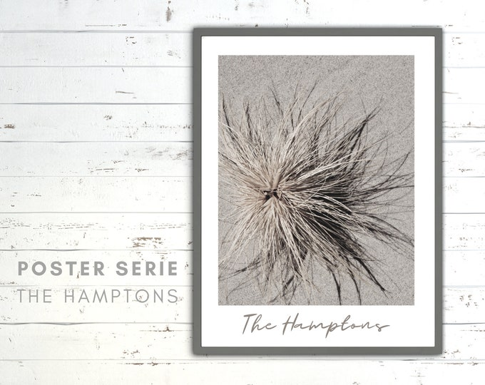 The Hamptons Poster | Dune | Reeds | Sea | Beach Life | maritim | Pictures series | Wall Decoration | Coastal Style | Coast | Beach grass