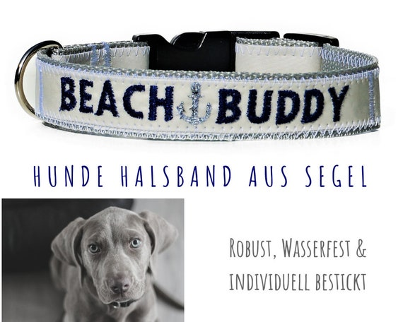 "Grey dog collar | Sail | 2.5 cm wide | 38-41 cm long | Strap band | Blue embroidery ""Beach Buddy"" with anchor in silver 