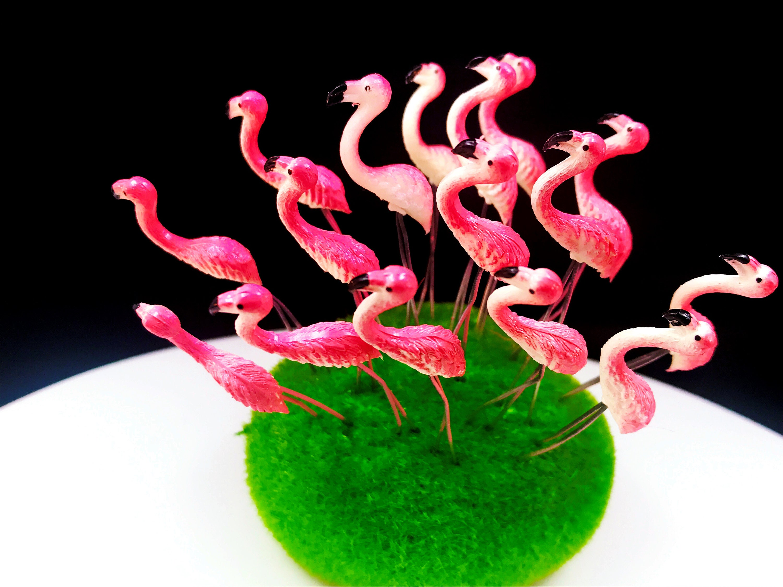 10 Mixed Tiny Miniature Color Parrot  Stake Dollhouse Fairy Garden Terrarium