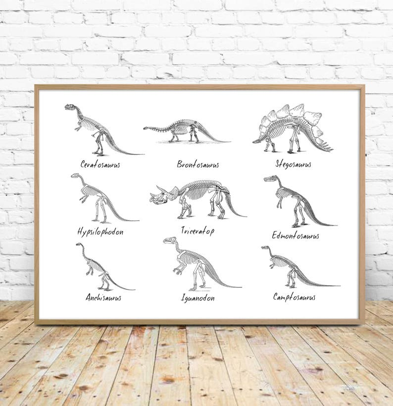 graphic relating to Printable Dinosaur known as Dinosaur Artwork Printable, Dinosaurs chart, dinosaur record, species, paleontology printable, dinosaur decor, wall artwork, obtain, boy space print