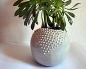 Cactus flowerpot with spikes, minimalist design, handmade in Andalusia, stoneware, organic shape, gray flowerpot, modern style, sphereical