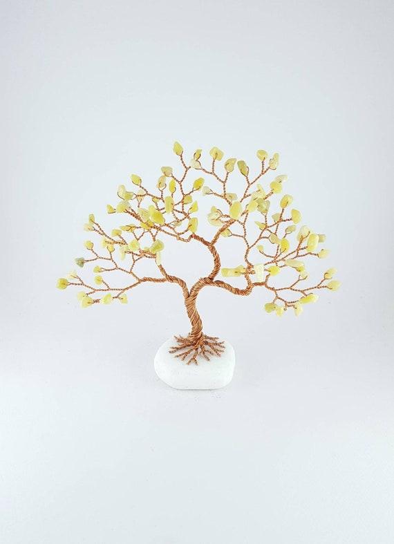 Olive New Jade Tree 12th Anniversary Gift 35th Anniversary Etsy